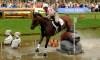 Sports équestres – Concours complet