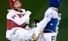 L'argent pour Sergerie en taekwondo