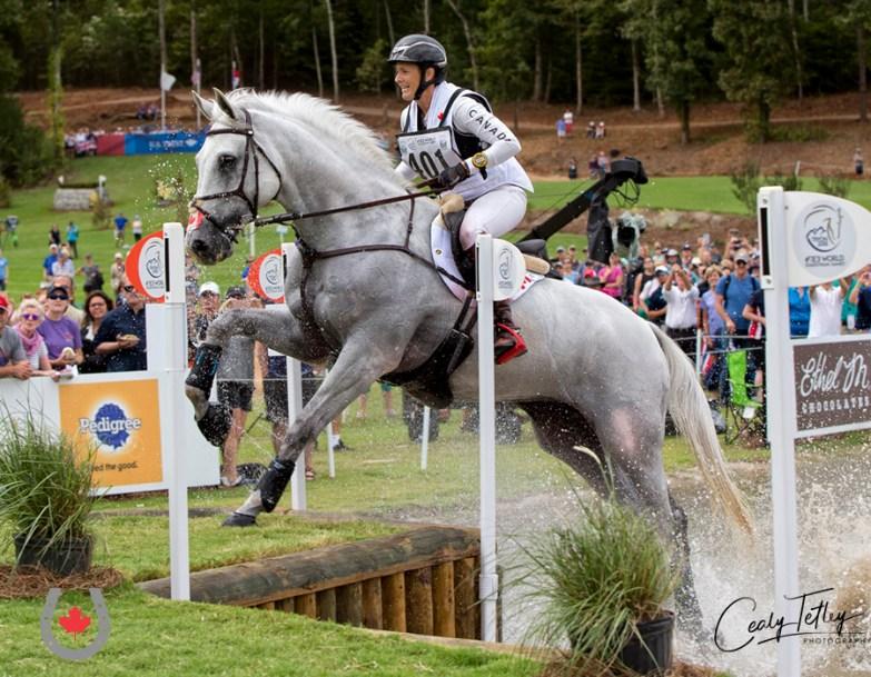 Une athlète de sports équestres en action sur son cheval