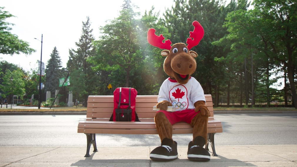 komak sits on a bench with a back pack